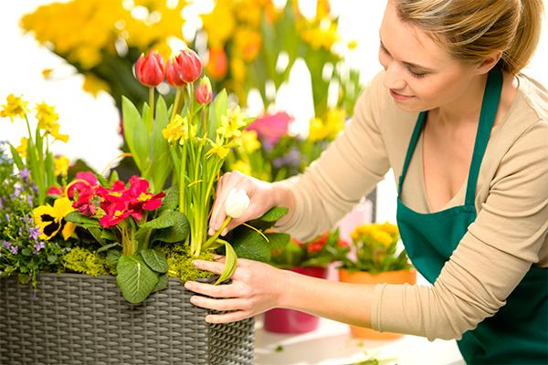 Флорист — кто это и требования к профессии, с чем работает и где обучают специалистов